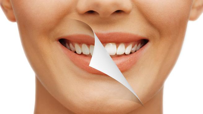 Periodoncia(Especialidad de la odontología que trata las encías y tejidos de sostén de los dientes)